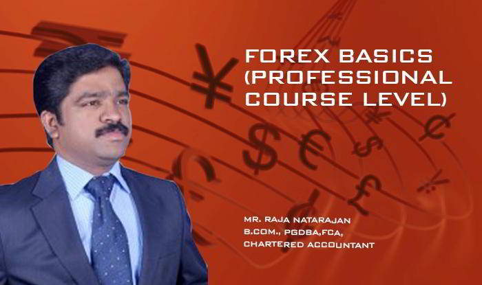 Forex Basics (Professional Course Level)