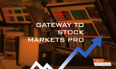 Gateway to Stock Markets Pro