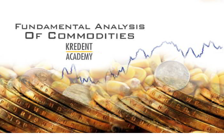 fundamental analysis of commodities